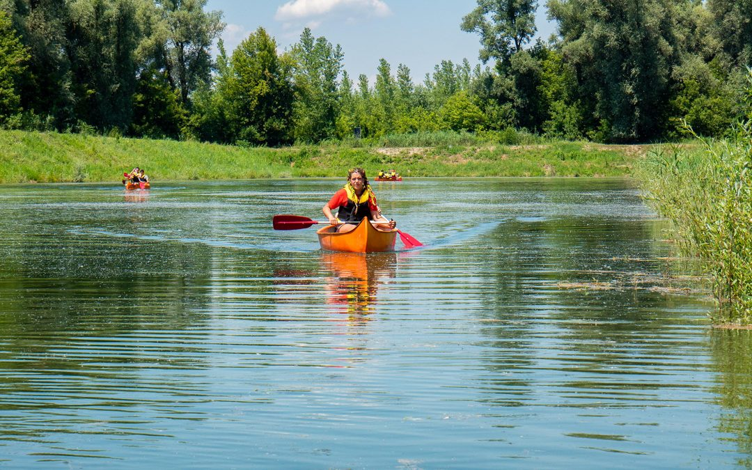Preko 80 mladih provelo 3 zabavna i edukativna dana u istraživačkom kampu na odmorištu Drava u Bistrincima